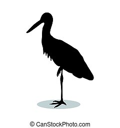 Heron bird  black silhouette animal