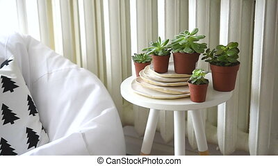 Scandinavian interior home decor, succulents and cozy chair...