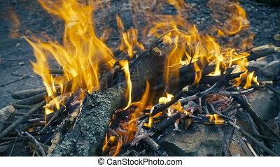 bonfire with burning log, slow motion - bonfire with burning...