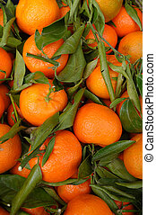 Clementines - A basket of clementines and leaves
