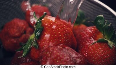 Strawberry in a sieve is washed. Slow motion