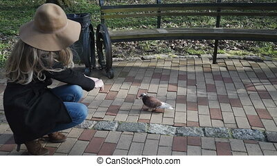 CLOSE UP: pigeons running around young woman. Girl feeding. Animals taking food from human hand