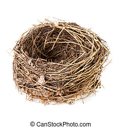 Nest isolated on white. Empty nest of a common blackbird or...