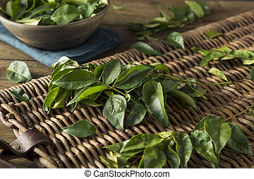 Raw Green Organic Curry Leaves Ready to Cook With
