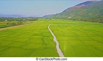 Drone Rises Over Road among Rice Fields by Mountains - drone...