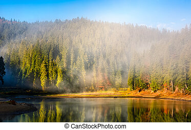 mountain lake on foggy morning in spruce forest - View on...