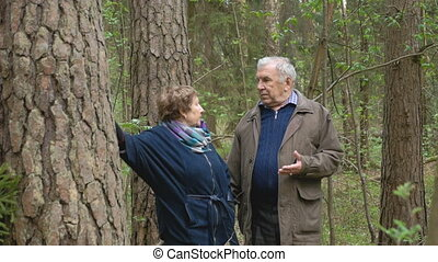 Mature handsome couple talking near a tree. Find out the relationship, swear, the man is waving his arms. Quarrel, anger and sadness.