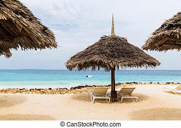 exótico,  tropical,  Palapa, playa,  sunbeds