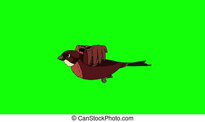 Brown Bird Flies. Animated Looped Motion Graphic Isolated on...