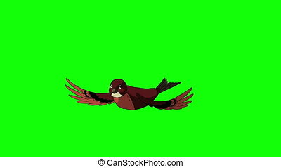 Brown Bird Came Flying and Flies Away. Animated Motion...