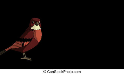 Brown Bird Jumping. Animated Motion Graphic with Alpha...
