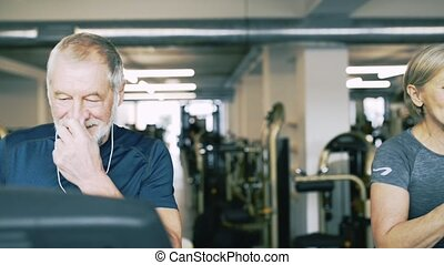 Fit seniors in gym on treadmills doing cardio work out. -...