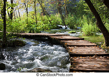 Forest Stream Scenery - Wooden foot bridge across the stream...