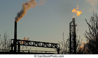 burning torch at the refinery among the trees - Refinery...
