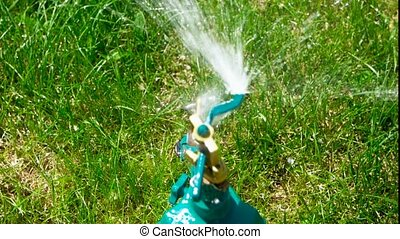 Yard sprinkler. - Yard or garden sprinkler working. Above...