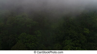 Aerial view of beautiful green hills mountains forest surrounded by clouds