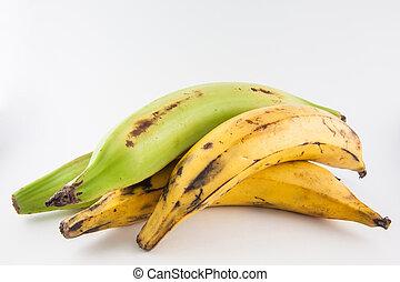 Plantain or Green Banana (Musa x paradisiaca) isolated in...