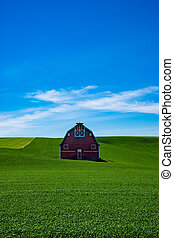 Red barn in the wheat fields of the Palouse region of eastern Washington state