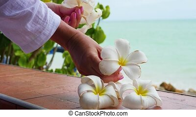 hand make floral arrangement of tropical flowers plumeria on the terrace