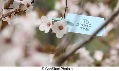 Its Spring Time blue tag. - Spring Time. Hand-lettering on...