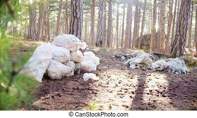 Mountain of garbage in the woods