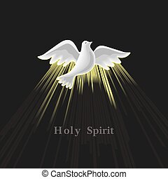 Pentecost Sunday. Holy Spirit.