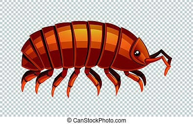 Lice on transparent background illustration