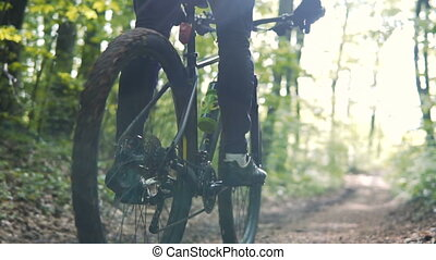 Man Rides Bicycle in the Forest - Young sports man riding...