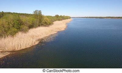 Aerial shot on the Dnipro riverbank covered with dry cane and forest in spring