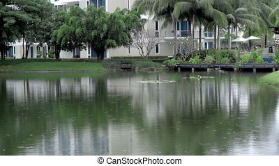 Tropical rain, slow motion - Tropical rain on the pond in...