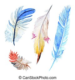 Watercolor bird four various feathers