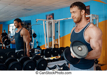 Male bodybuilder lifts weights in the gym. Powerful biceps....