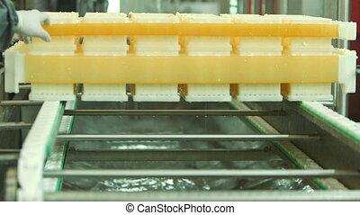 Cheese production plant, Industrial equipment at dairy factory