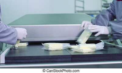 Cheese production plant, Industrial equipment at dairy...