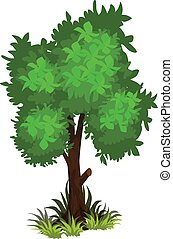 Isometric Cartoon Bushy Green Tree - Tileset Map Element or...