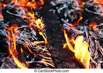 open fire woodfire