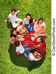 Seven happy friends relaxing on a picnic blanket
