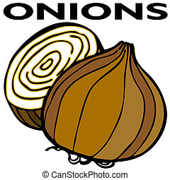 Onions - An image of two onions.