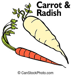 Radish Carrot Set - An image of a radish and carrot.