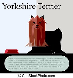Yorkshire terrier colourful postcard