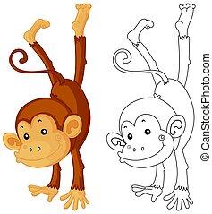 Animal outline for monkey flipping illustration