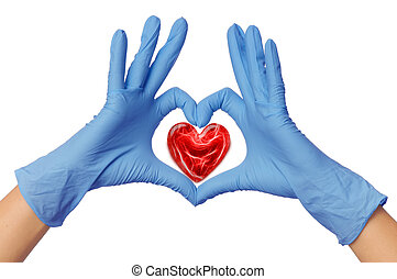 doctor with heart - cardiologist in blue gloves saving life...