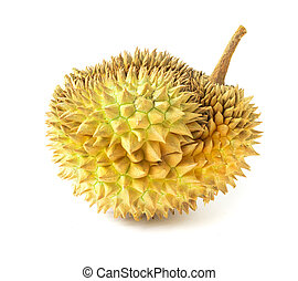 Durian on white background, topical fruit