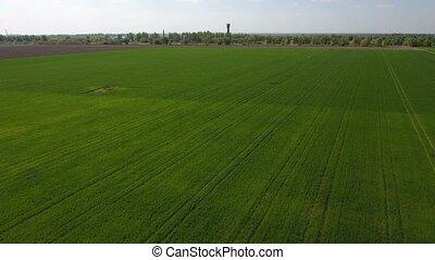 Splendid aerial shot of bright green fertile fields,...