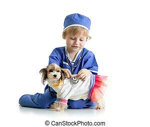 little boy examining puppy dog, isolated on white background...