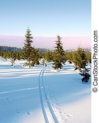 Two ways for cross country skiing in winter mountains....