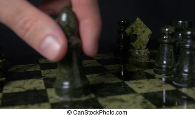 Black elephant in chess defeats white horse. Detail of chess...