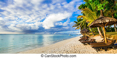Golden beach before the sunset. Mauritius island - Beautiful...