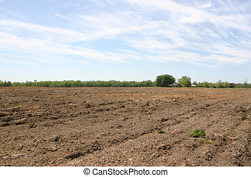 Plowed fields at farm
