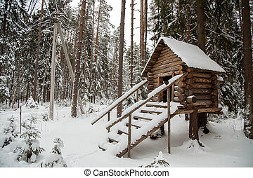 Cottage with a staircase in a winter